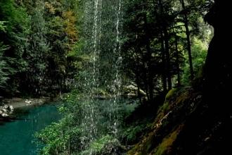 tara-river (11)