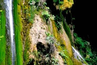 tara-river (12)