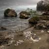 tara-river (2)