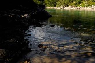 tara-river (4)